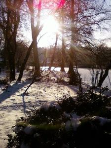Iarna asta in parc